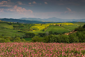 070422_038_Val-d'Orcia.jpg